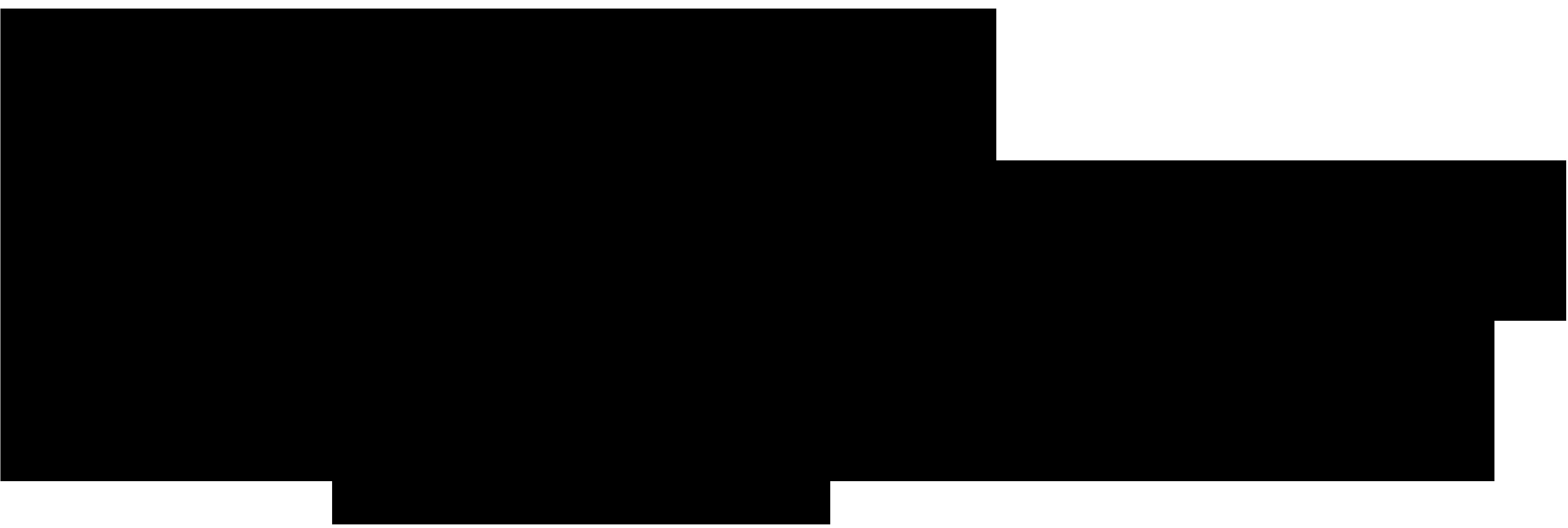 Nic Perry Logo